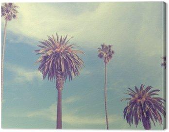 Palm trees at Santa Monica beach.