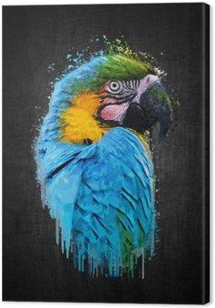 Canvas Print Parrot bird (Severe Macaw). Paint effect