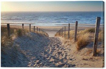 Canvas Print path to North sea beach in gold sunshine