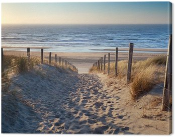 Canvas Print path to North sea beach in gold sunshine