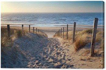 path to North sea beach in gold sunshine Canvas Print