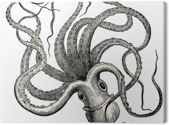 Canvas Print Pieuvre (Octopus vulgaris)