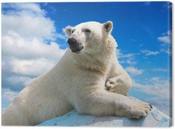 Canvas Print polar bear against sky