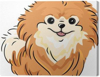 Canvas Print Pomeranian