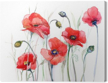 Canvas Print poppy