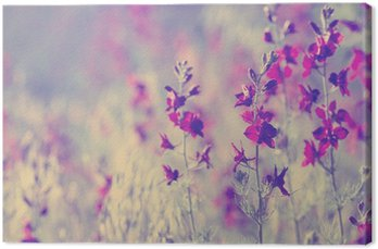 Canvas Print purple wild flowers