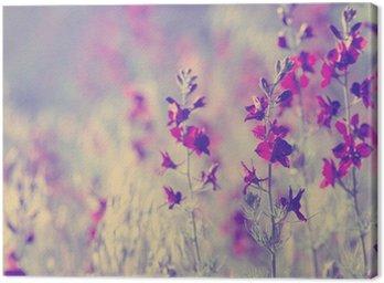 Canvas Print purple wild flowers