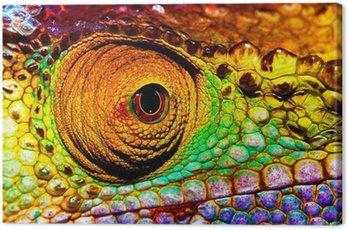 Reptilian eye Canvas Print