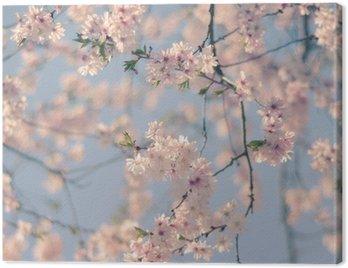 Canvas Print Retro Filter Cherry Blossom