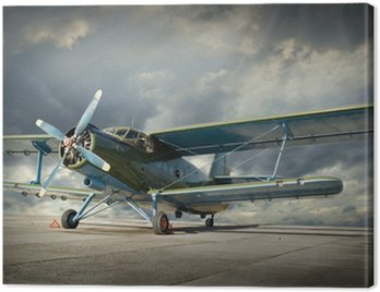 Canvas Print Retro style picture of the biplane. Transportation theme.