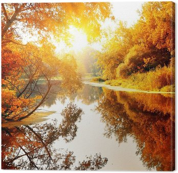 River in a delightful autumn forest Canvas Print