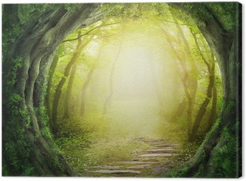 Canvas Print Road in dark forest