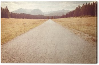 Road towards the mountains - Vintage image