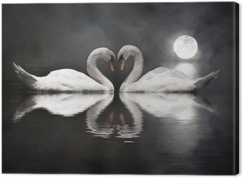 Canvas Print romantic swan during valentine's day