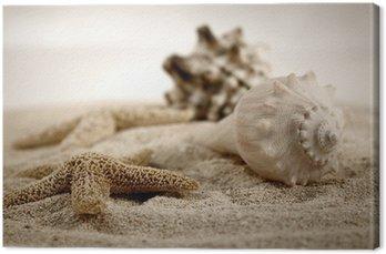 Canvas Print seashells on the sand