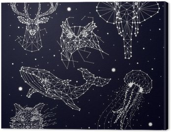 set of constellation , elephant, owl, deer, whales , jellyfish , fox , star , vector graphics