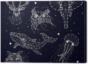 set of constellation , elephant, owl, deer, whales , jellyfish , fox , star , vector graphics