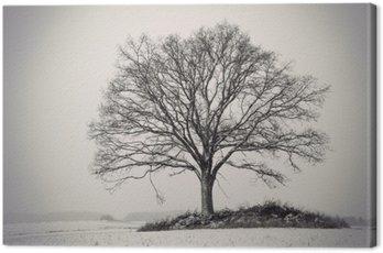 Canvas Print silhouette of oak tree