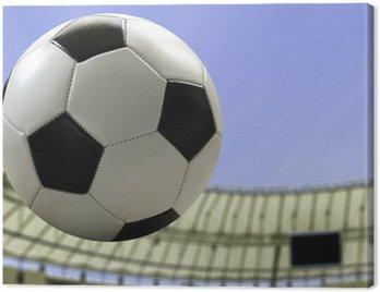 Canvas Print Soccer ball flying on the stadium
