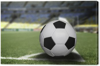 Canvas Print Soccer ball on the field