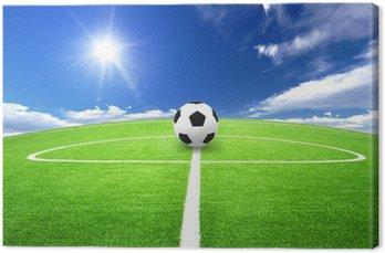 soccer field Canvas Print