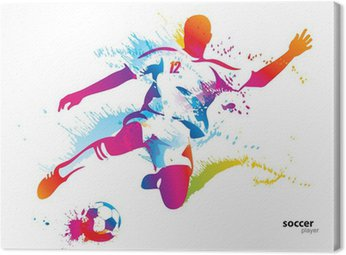 Canvas Print Soccer player kicks the ball. The colorful vector illustration