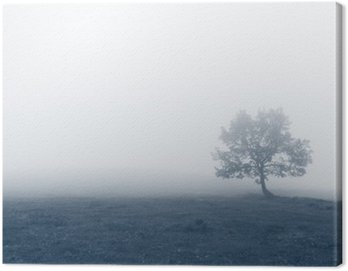Canvas Print solitary tree with fog