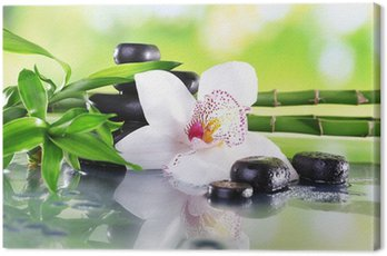 Canvas Print Spa stones, bamboo branches and white orchid