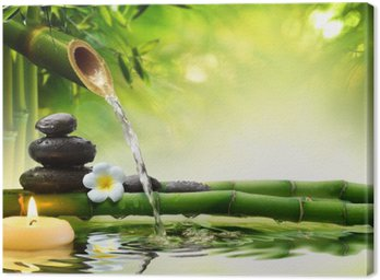 spa stones in garden with flow water Canvas Print