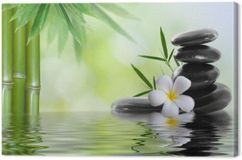 Canvas Print spa stones with frangipani