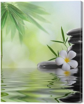 Canvas Print spa stones with frangipani