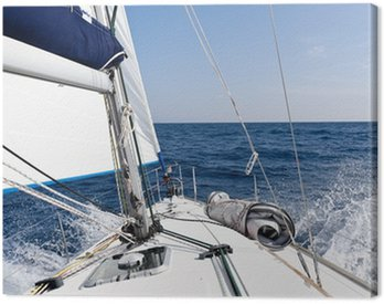 Speed sailing yacht in the sea