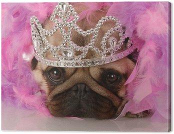 spoiled dog - adorable pug dressed up as a princess Canvas Print