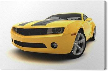 Sports car - Racing car
