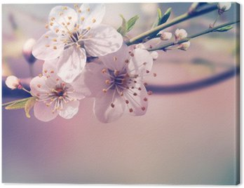 Canvas Print Spring card background