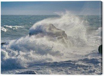 Storm in Black sea, coast of Crimea Canvas Print
