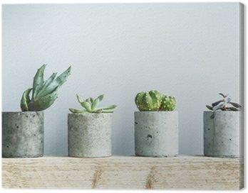Canvas Print Succulents in diy concrete pot. Scandinavian room interior decor