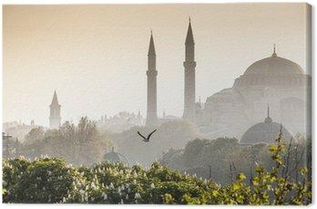 Sultanahmet Camii / Blue Mosque, Istanbul, Turkey