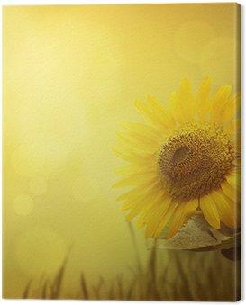 Canvas Print Summer sunflower background