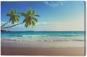 Canvas Print sunset on Seychelles beach