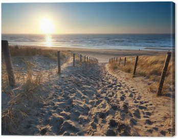 Canvas Print sunshine over path to beach in North sea