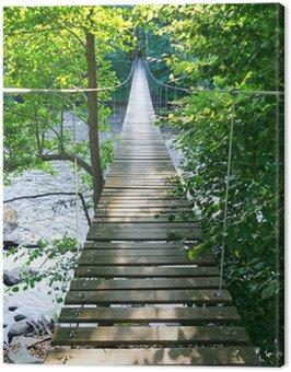 Swedish suspension bridge over Morrum river Canvas Print