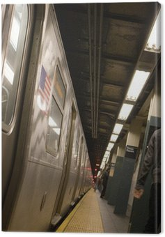 The side of a New York City subway while not in motion. Canvas Print