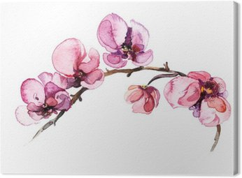 the watercolor flowers orchid isolated on the white background Canvas Print