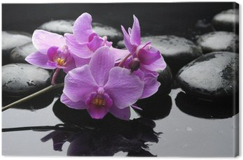 Canvas Print therapy stones and orchid flower with water drops