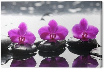 Canvas Print Three zen stones and three orchids with reflection