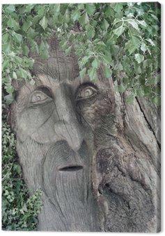 Canvas Print treebeard