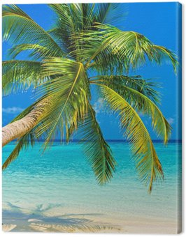 Canvas Print Tropical beach