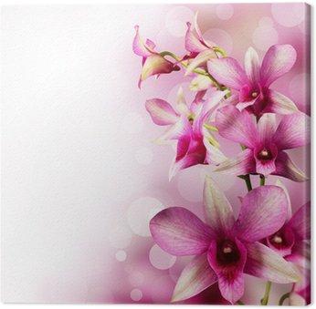 tropical orchids Canvas Print
