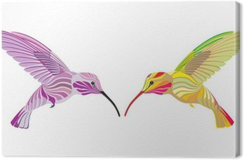 two hummingbird Canvas Print